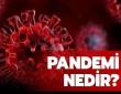 Pandemi Acil Durum Planı